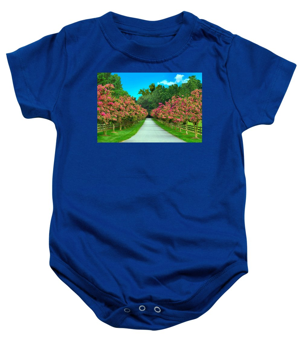 Crepe Baby Onesie featuring the photograph Straight And Narrow by Nadine Lewis