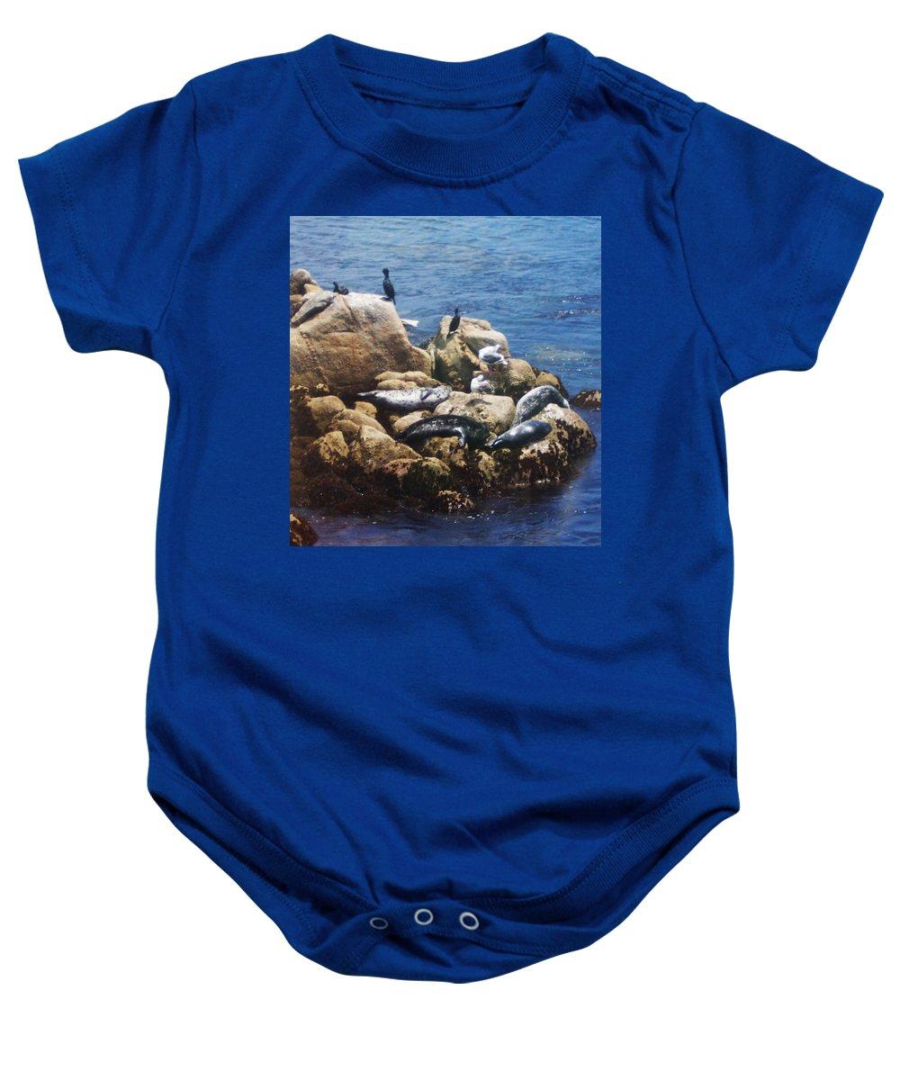 Sunning Seals Baby Onesie featuring the photograph Sunning Seals by Pharris Art