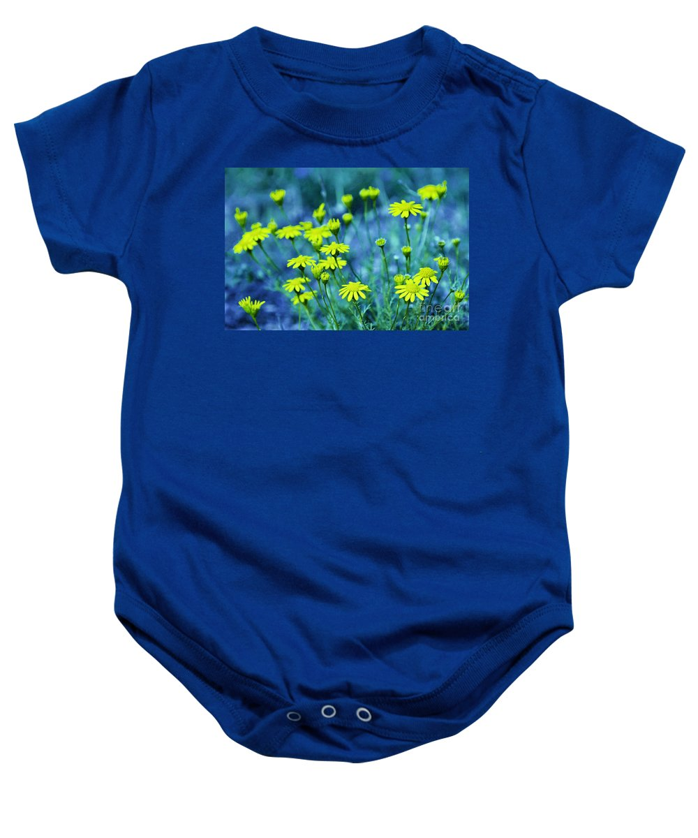 Wildflowers Baby Onesie featuring the photograph Texas Wildflowers V4 by Douglas Barnard
