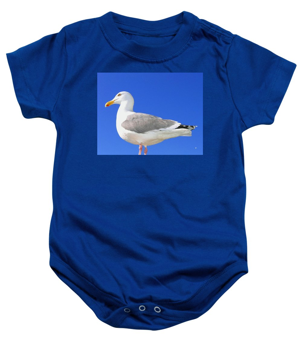 The Admiral Baby Onesie featuring the photograph The Admiral by Will Borden