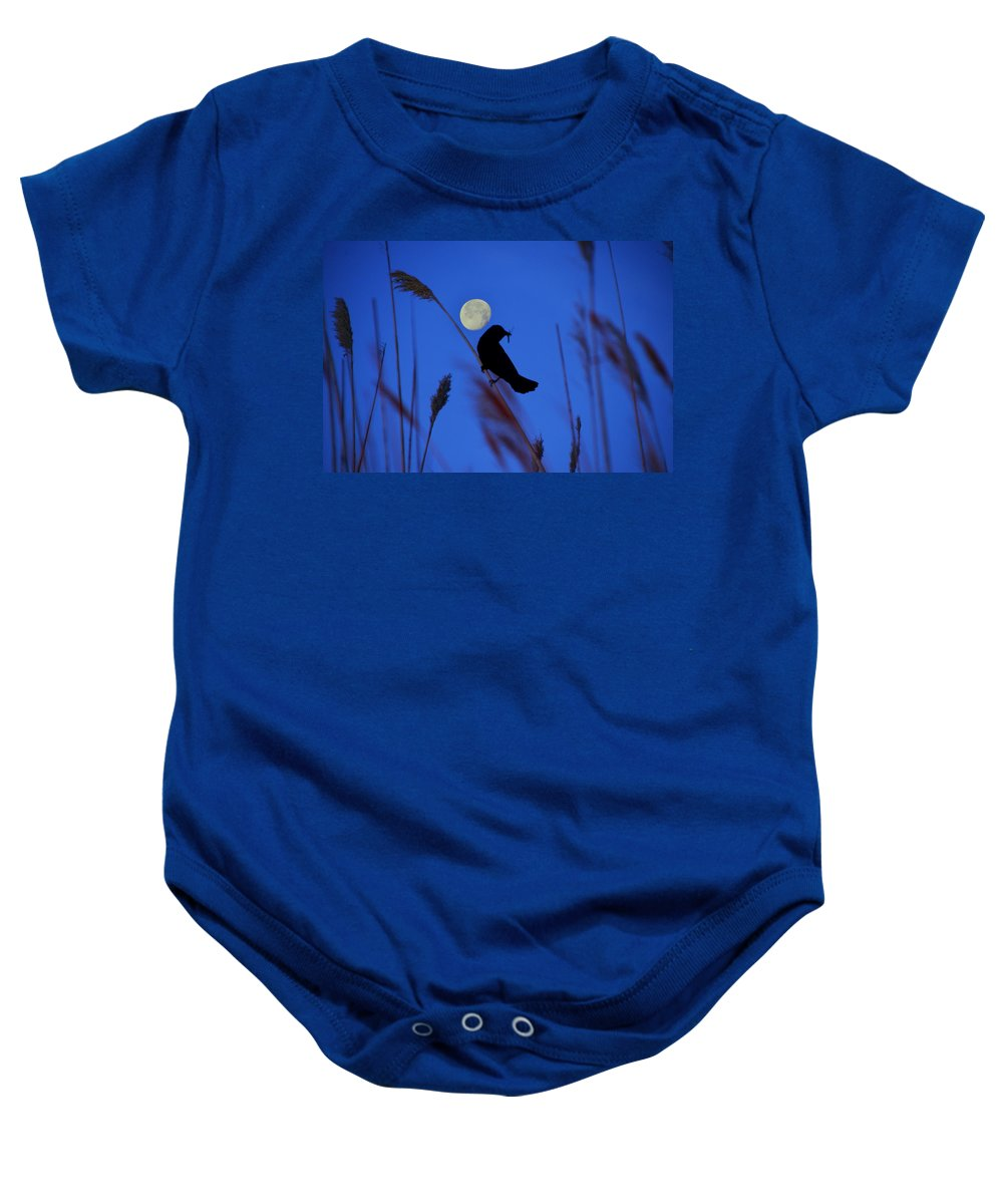 Blackbird Baby Onesie featuring the photograph The Blackbird And The Moon by Bill Cannon