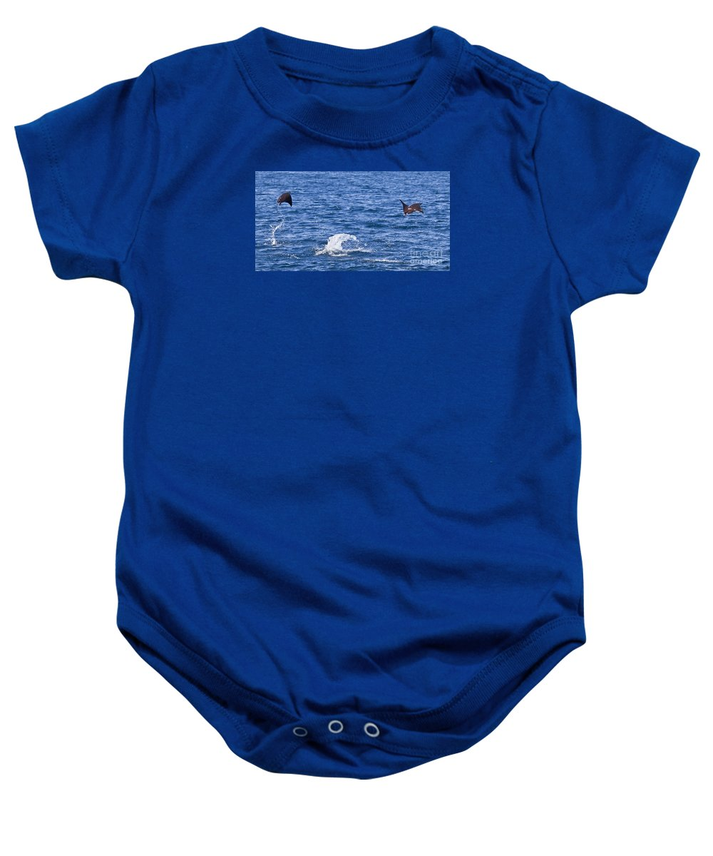 Two Baby Onesie featuring the photograph Two Smoothtail Mobulas Mobula Munkiana Breaching by Liz Leyden