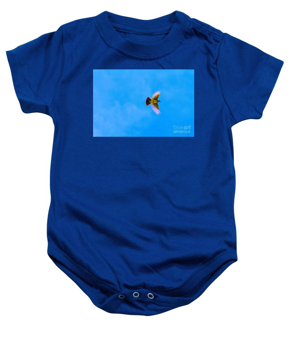 Yellow Breasted Blue Sky Baby Onesie featuring the photograph Yellow Breasted Blue Sky by L L L