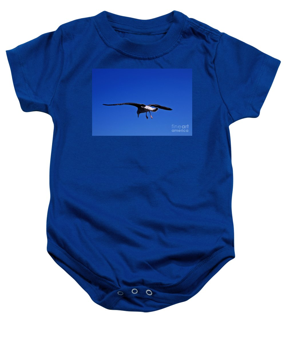 Animal Baby Onesie featuring the photograph Seagull In Flight by John Greim