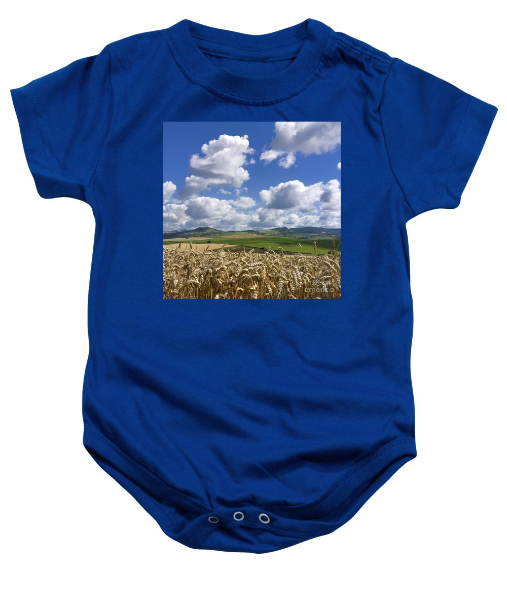 Agriculture Baby Onesie featuring the photograph A Field Of Barley . Auvergne. France by Bernard Jaubert