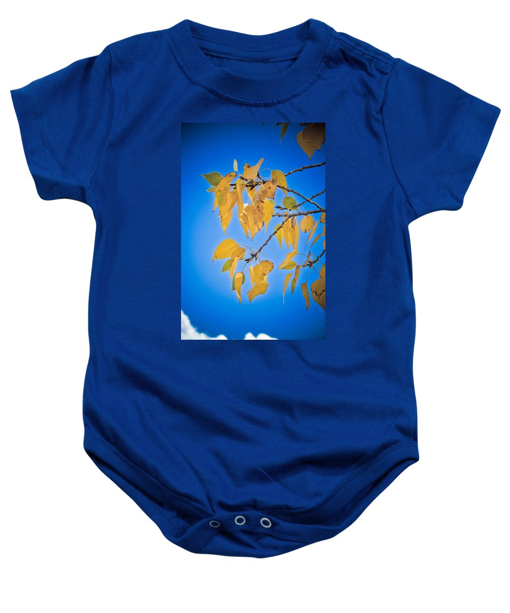 Autumn Baby Onesie featuring the photograph Autumn Aspen Leaves And Blue Sky by James BO Insogna