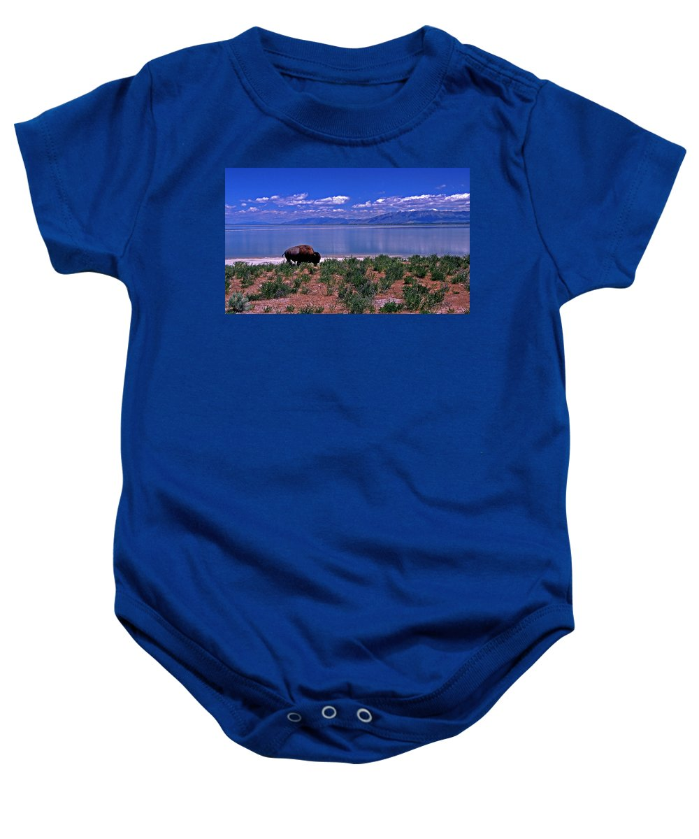 Utah Baby Onesie featuring the photograph Buffalo And The Great Salt Lake by Rich Walter