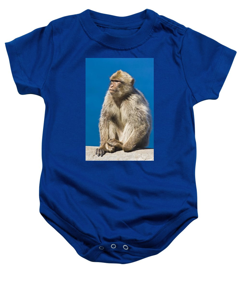 Gibraltarian Baby Onesie featuring the photograph Gibraltar Barbary Macaque Macaca by Ken Welsh