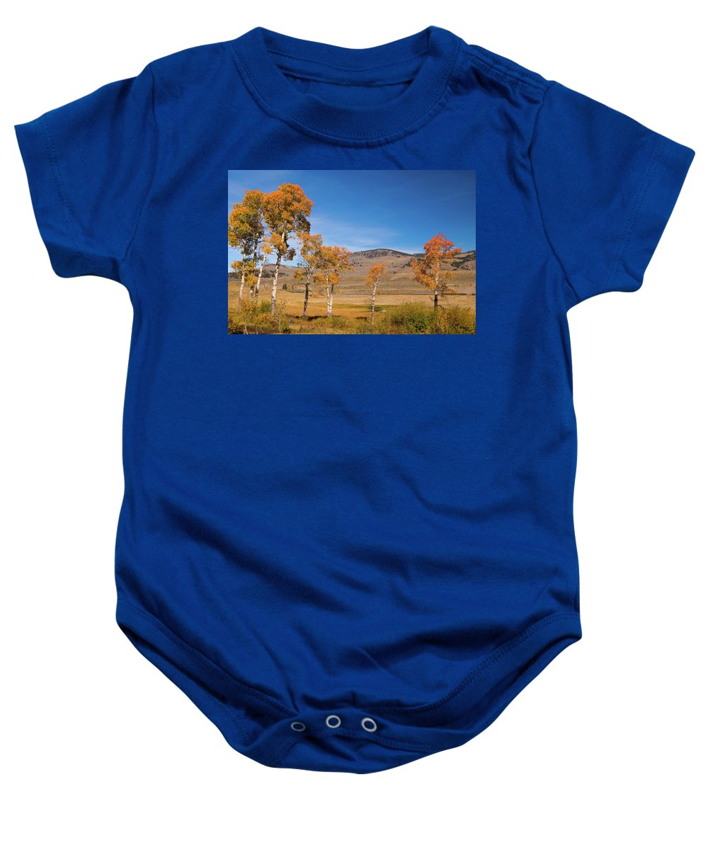 Yellowstone Baby Onesie featuring the photograph Lamar Valley Aspens by Steve Stuller