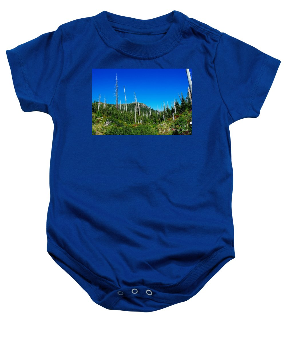 Dead Trees Baby Onesie featuring the photograph Sand Blasted Trees by Jeff Swan