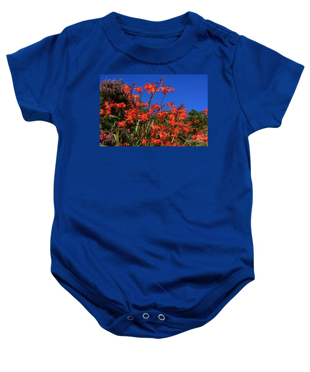 Montbretia Baby Onesie featuring the photograph Montbretia, Summer Wildflowers by Aidan Moran