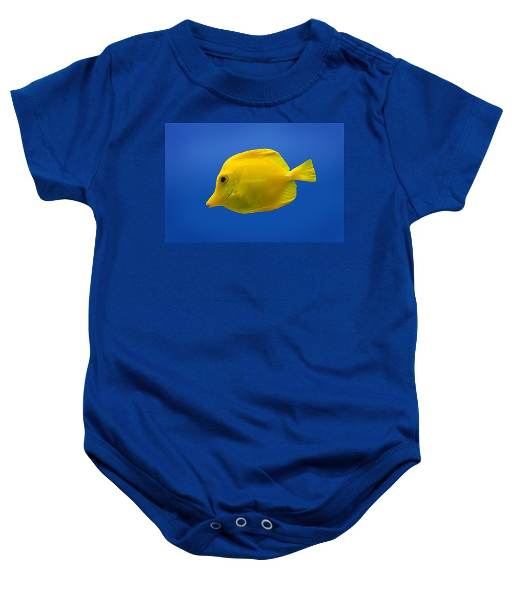 Blue Baby Onesie featuring the photograph Yellow Fish by Don Hammond