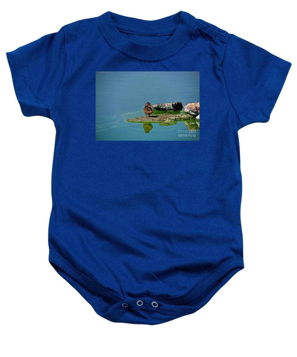 Duck Baby Onesie featuring the photograph Alone by Robert Pearson