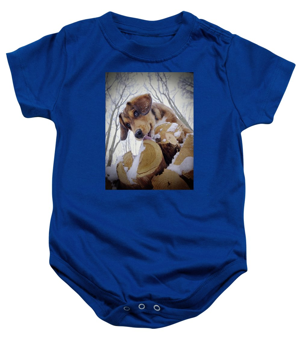 Nature Baby Onesie featuring the photograph Iced-lolly by AugenWerk Susann Serfezi