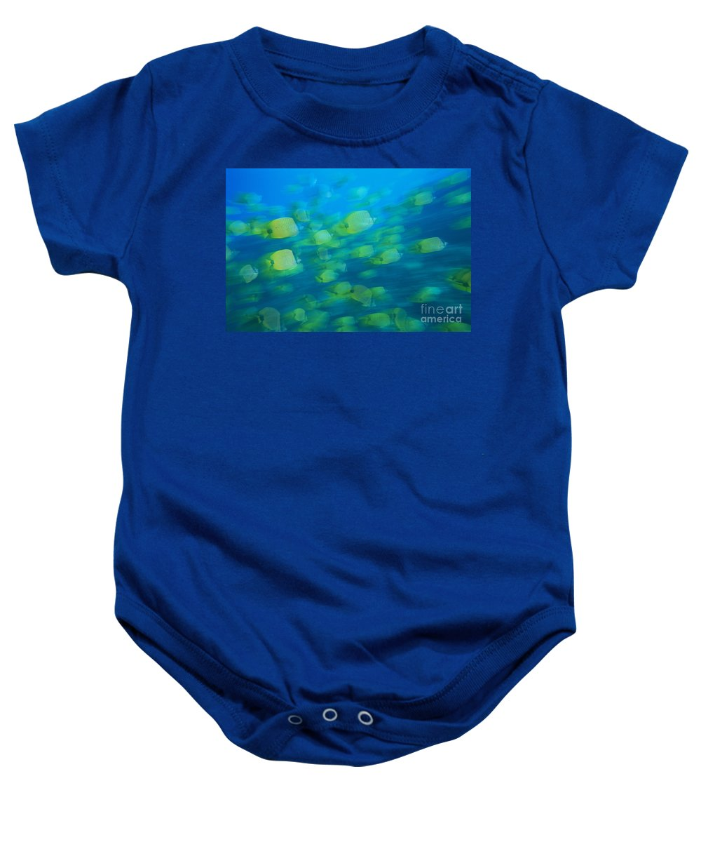 Active Baby Onesie featuring the photograph Milletseed Butterflyfish by Dave Fleetham - Printscapes