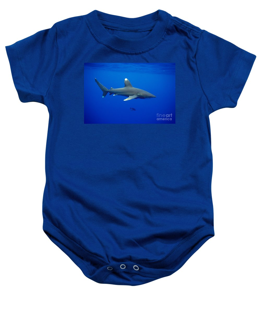 Animal Art Baby Onesie featuring the photograph Oceanic Whitetip Shark by Dave Fleetham - Printscapes