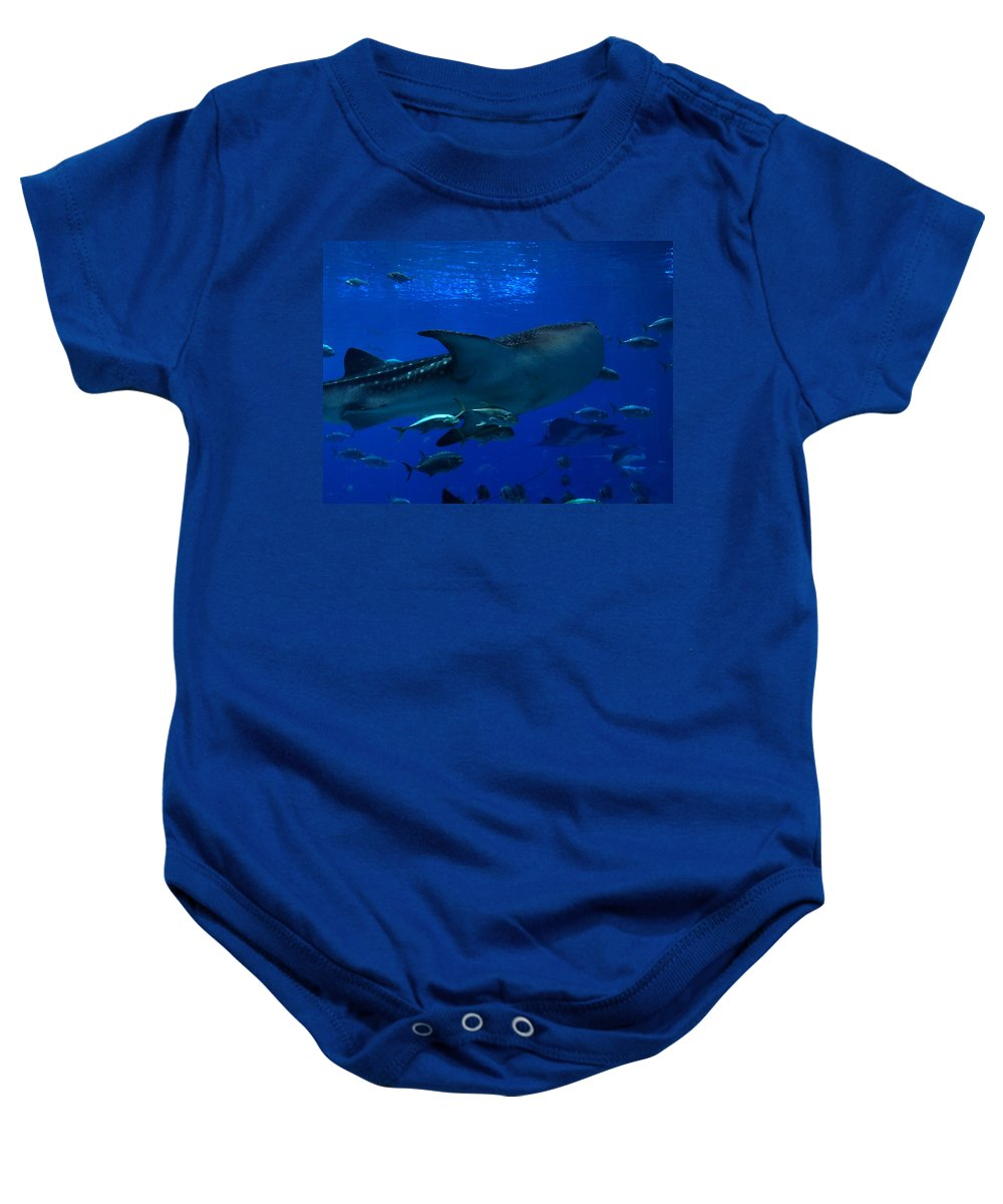 Sharks Baby Onesie featuring the photograph 1701 by Onyx Armstrong