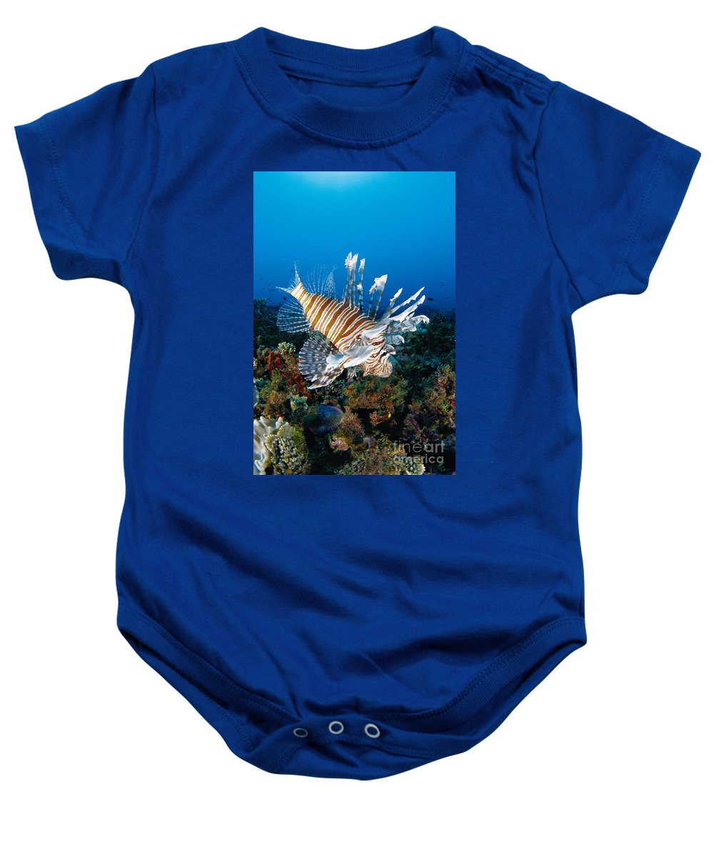 30-pfs0141 Baby Onesie featuring the photograph Underwater Close-up by Dave Fleetham - Printscapes