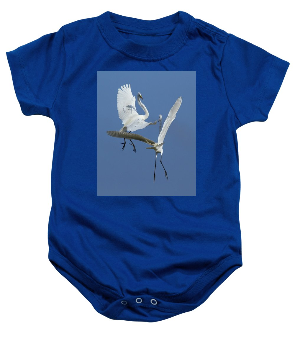 Great Egret Baby Onesie featuring the photograph Aerial Ballet by Andrew McInnes