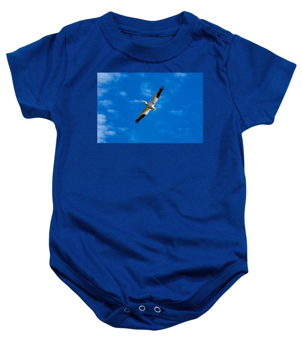 American Baby Onesie featuring the photograph American White Pelican by Marilyn Hunt
