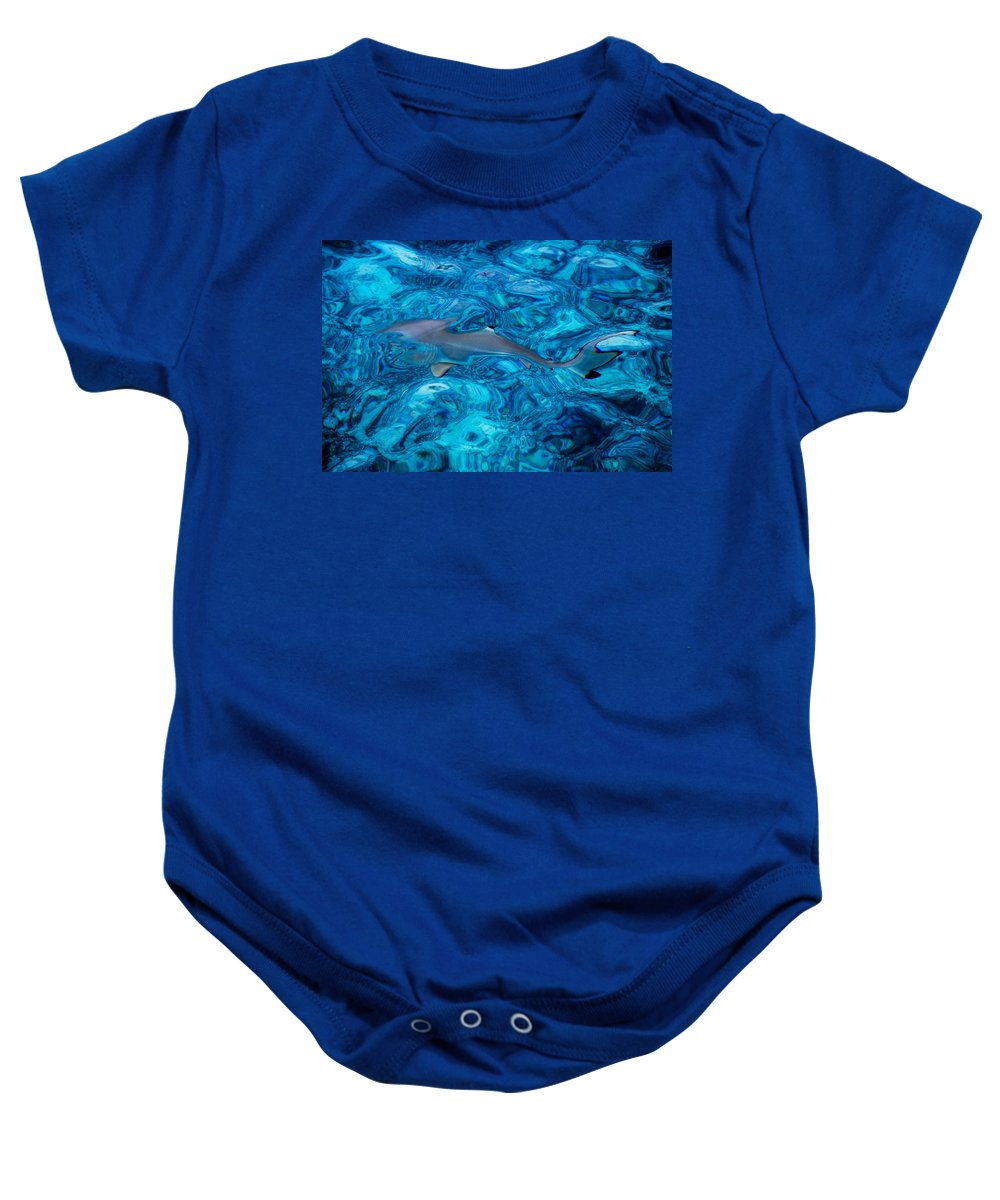 Nature Baby Onesie featuring the photograph Baby Shark In The Turquoise Water. Production By Nature by Jenny Rainbow