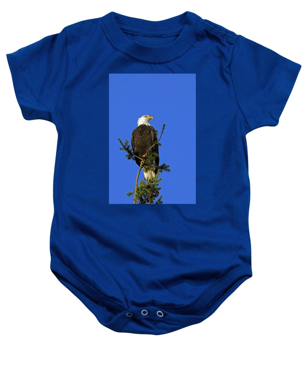 Bald Eagle Baby Onesie featuring the photograph Bald Eagle On Blue by Randall Ingalls