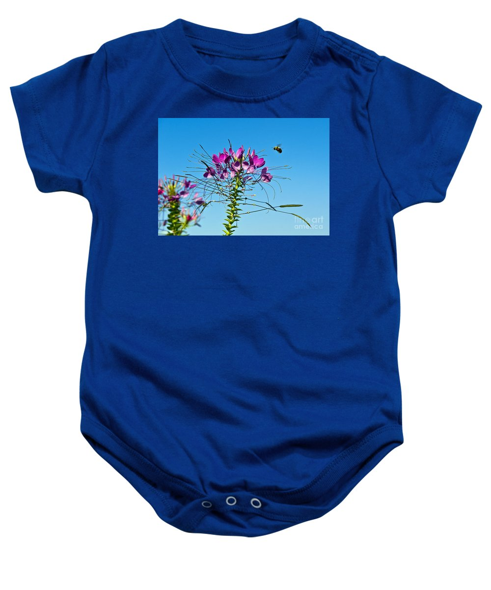 Bee Baby Onesie featuring the photograph Bee And Flower by John Greim