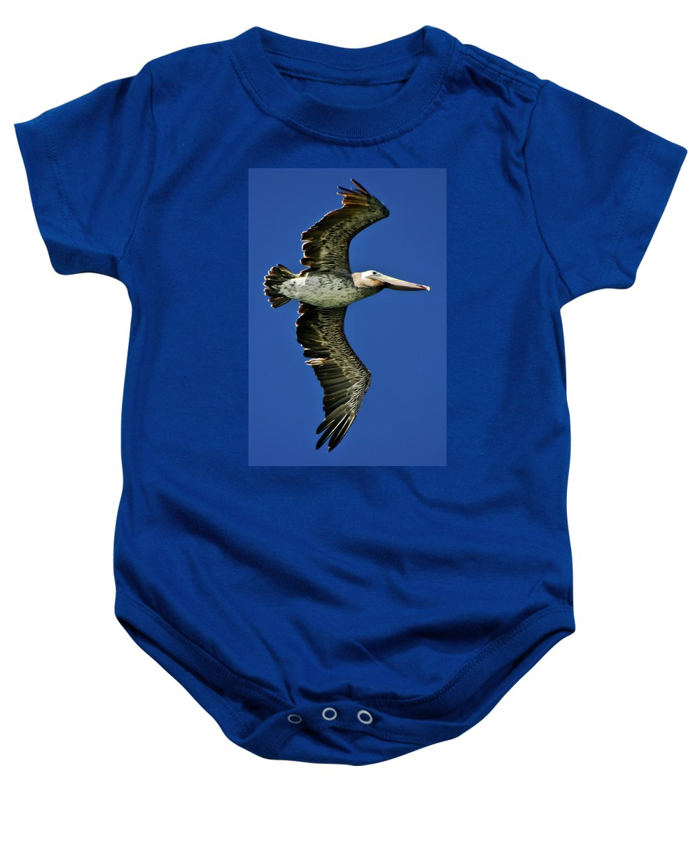 Brown Pelican Baby Onesie featuring the photograph Brown Pelican by Albert Seger