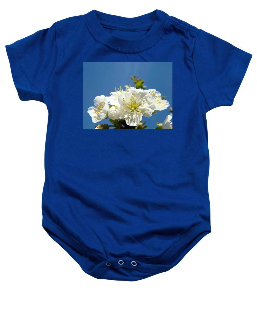 Blossom Baby Onesie featuring the photograph Cherry Blossoms Art White Spring Tree Blossom Baslee Troutman by Baslee Troutman