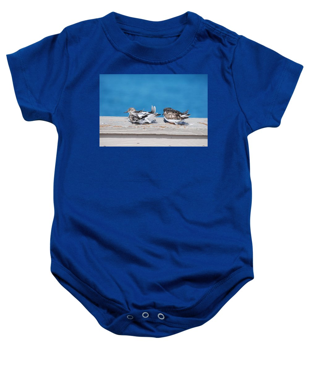 Bird Baby Onesie featuring the photograph Cold Birds by Rob Hans
