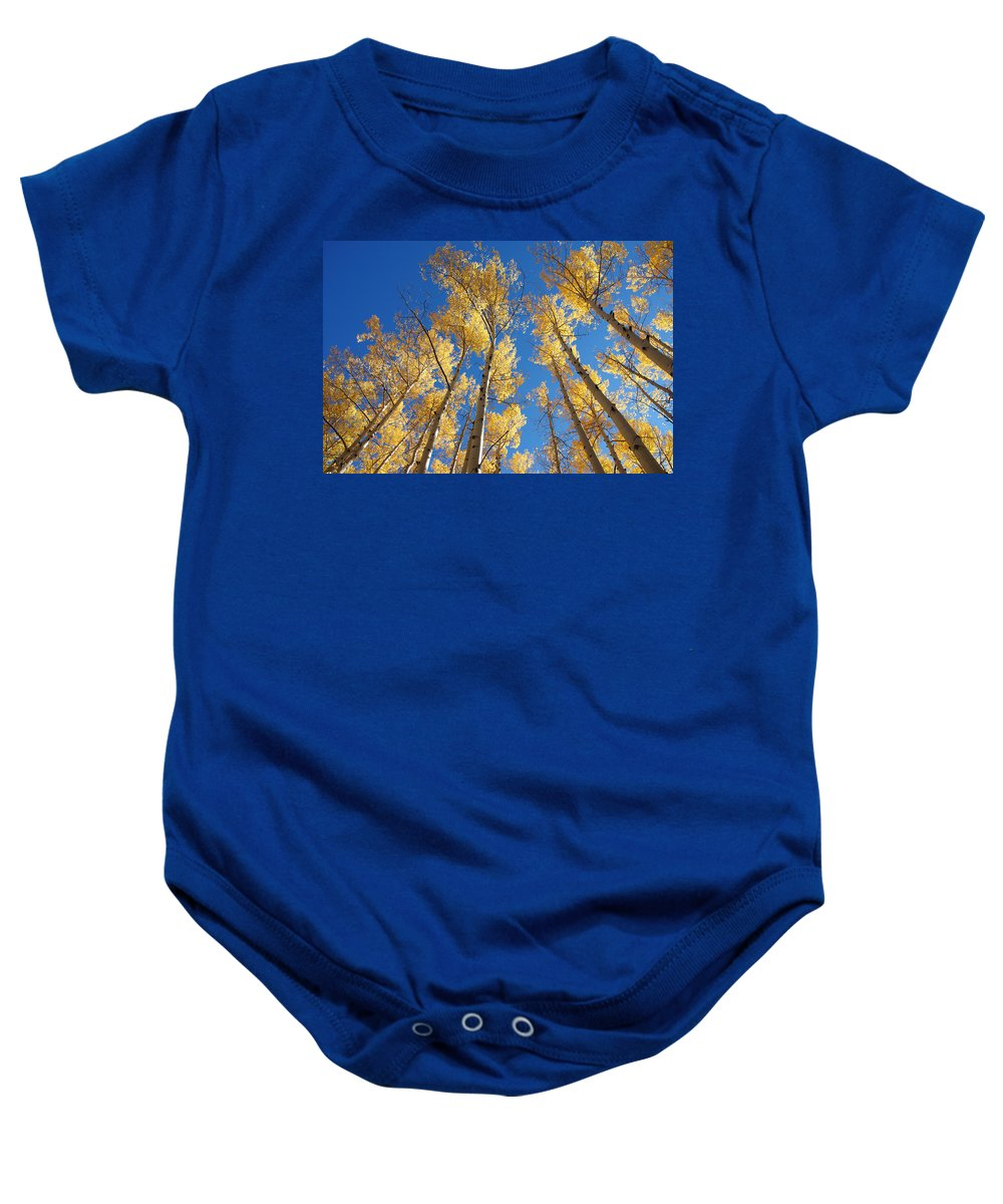 Aspen Baby Onesie featuring the photograph Colorado Aspen by Jerry McElroy