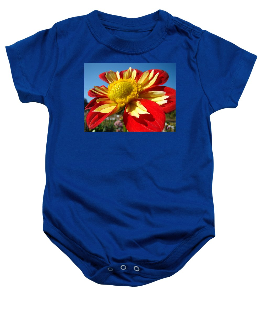 Dahlia Baby Onesie featuring the photograph Dahlia Flower Art Prints Canvas Red Yellow Dahlias Baslee Troutman by Baslee Troutman