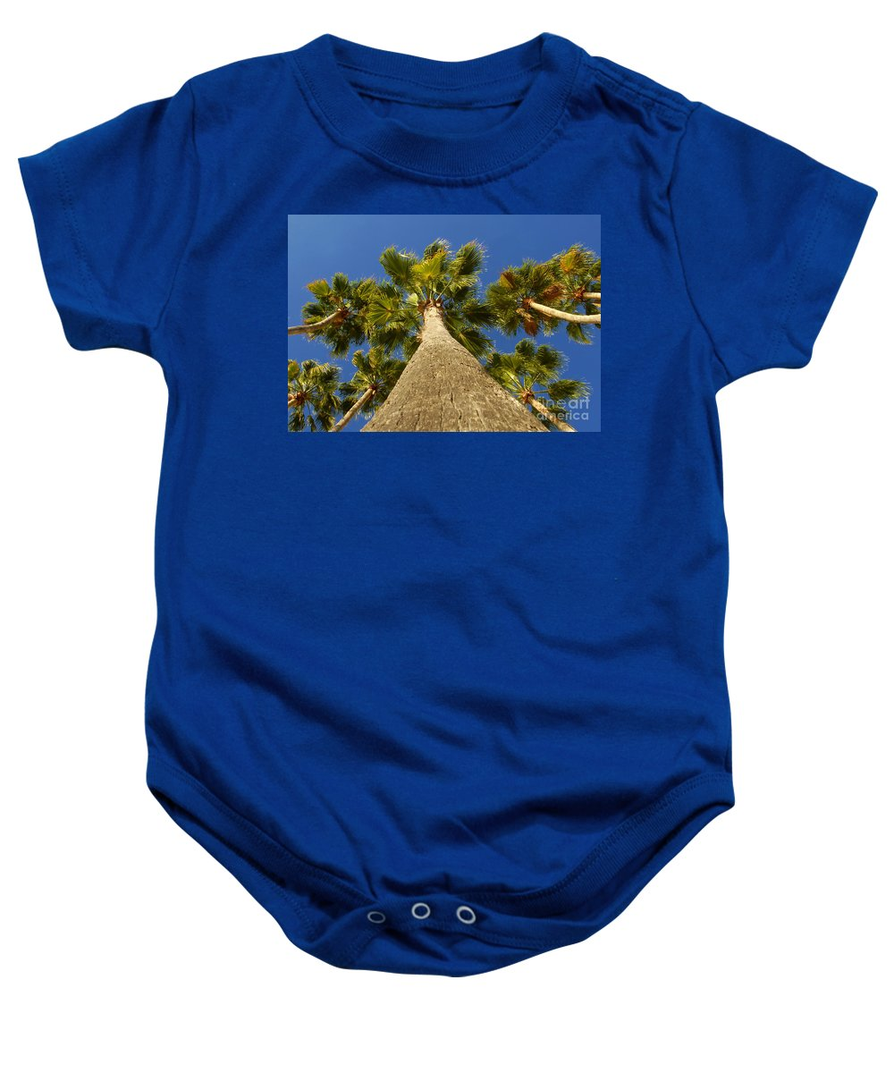 Florida. Palm Trees. Tropical Baby Onesie featuring the photograph Florida Palms by David Lee Thompson