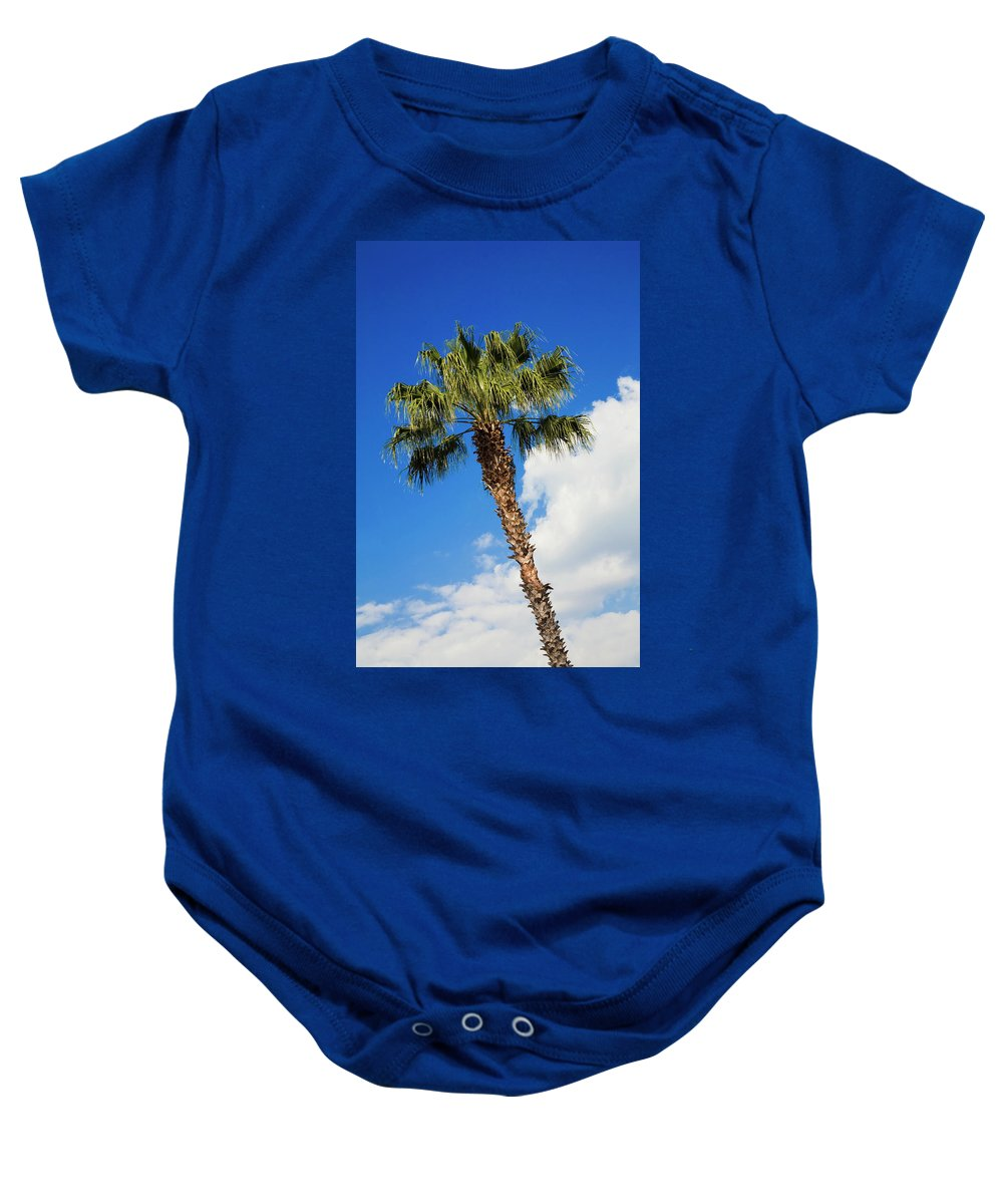 Florida State Tree Baby Onesie featuring the photograph Florida State Tree by Diane Macdonald