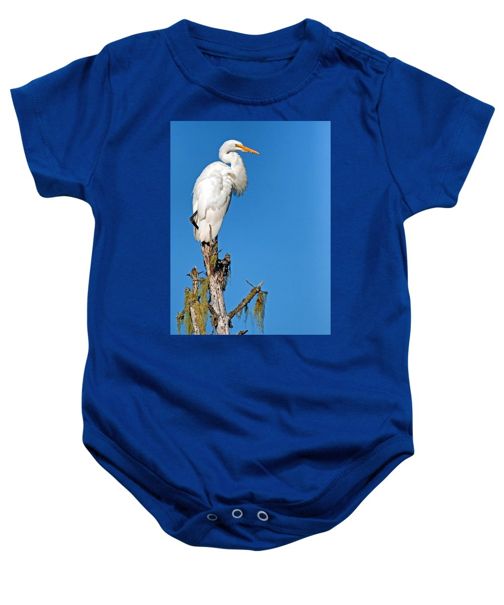 Giant Egret Baby Onesie featuring the photograph Giant Egret by Gallery Of Modern Art
