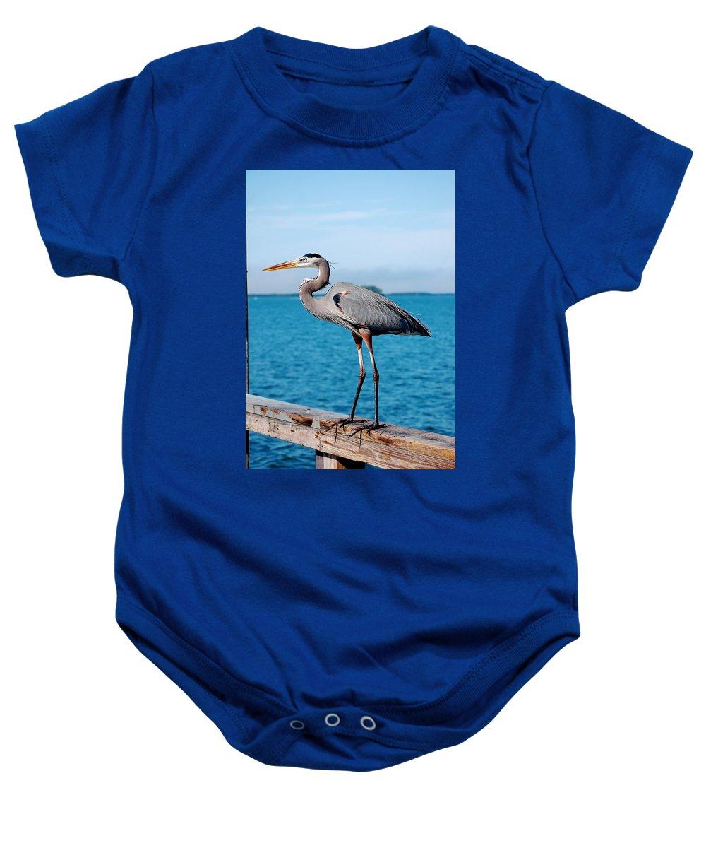 Grey Heron Baby Onesie featuring the photograph Grey Heron by Robert Meanor