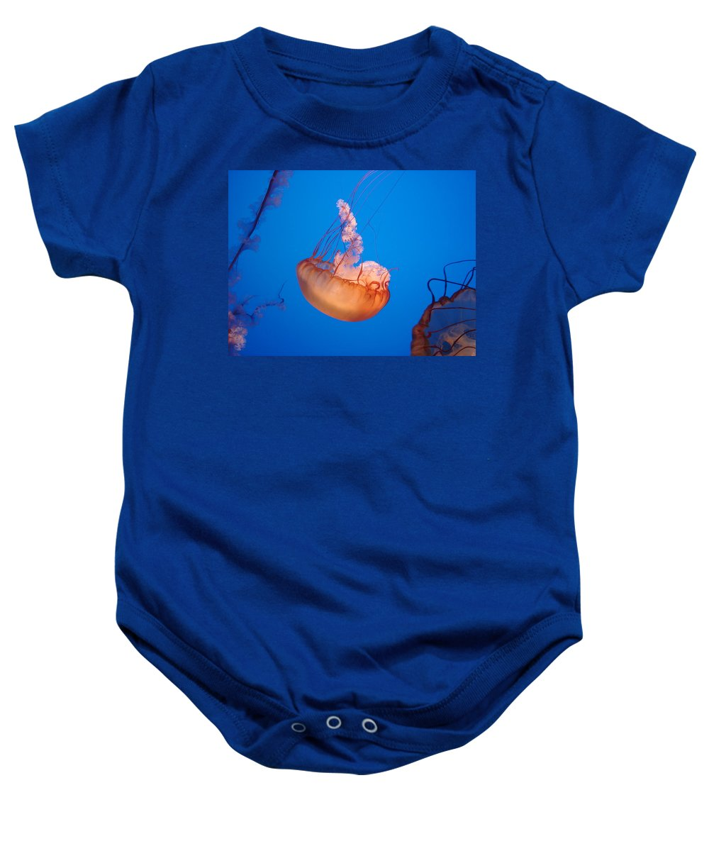 Jellyfish Baby Onesie featuring the photograph Ocean Beauty by Brittany Horton