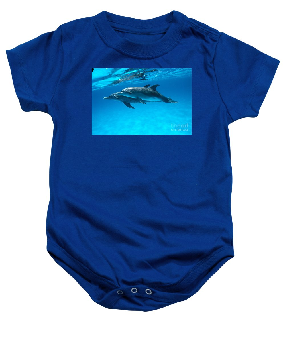 Animal Art Baby Onesie featuring the photograph Pair Of Spotted Dolphins by Ed Robinson - Printscapes