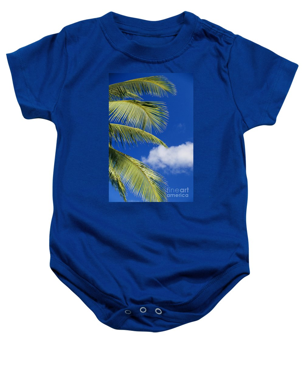 Afternoon Baby Onesie featuring the photograph Palm Abstract by Brent Black - Printscapes