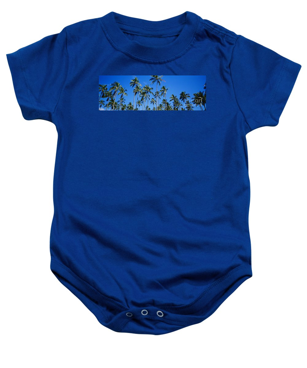 Afternoon Baby Onesie featuring the photograph Palm Tree Panorama by David Cornwell/First Light Pictures, Inc - Printscapes