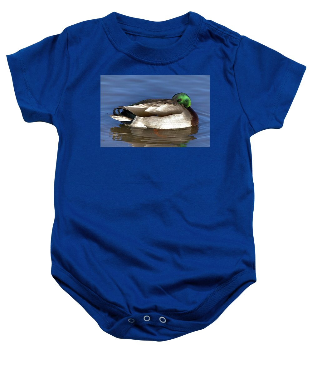 Duck Baby Onesie featuring the photograph Peek A Boo by Robert Pearson