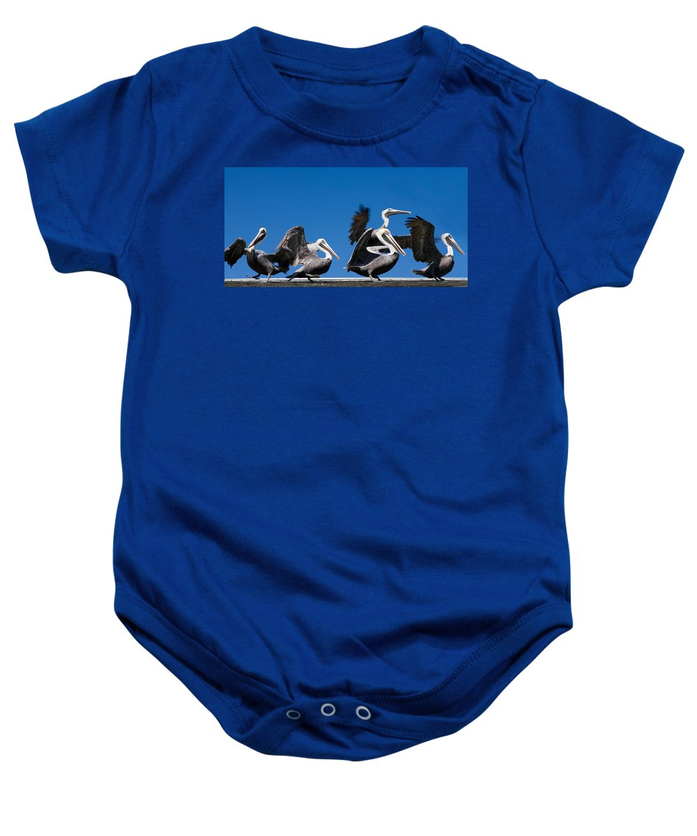 Pelicans Baby Onesie featuring the photograph Pelicans Take Flight by Mal Bray