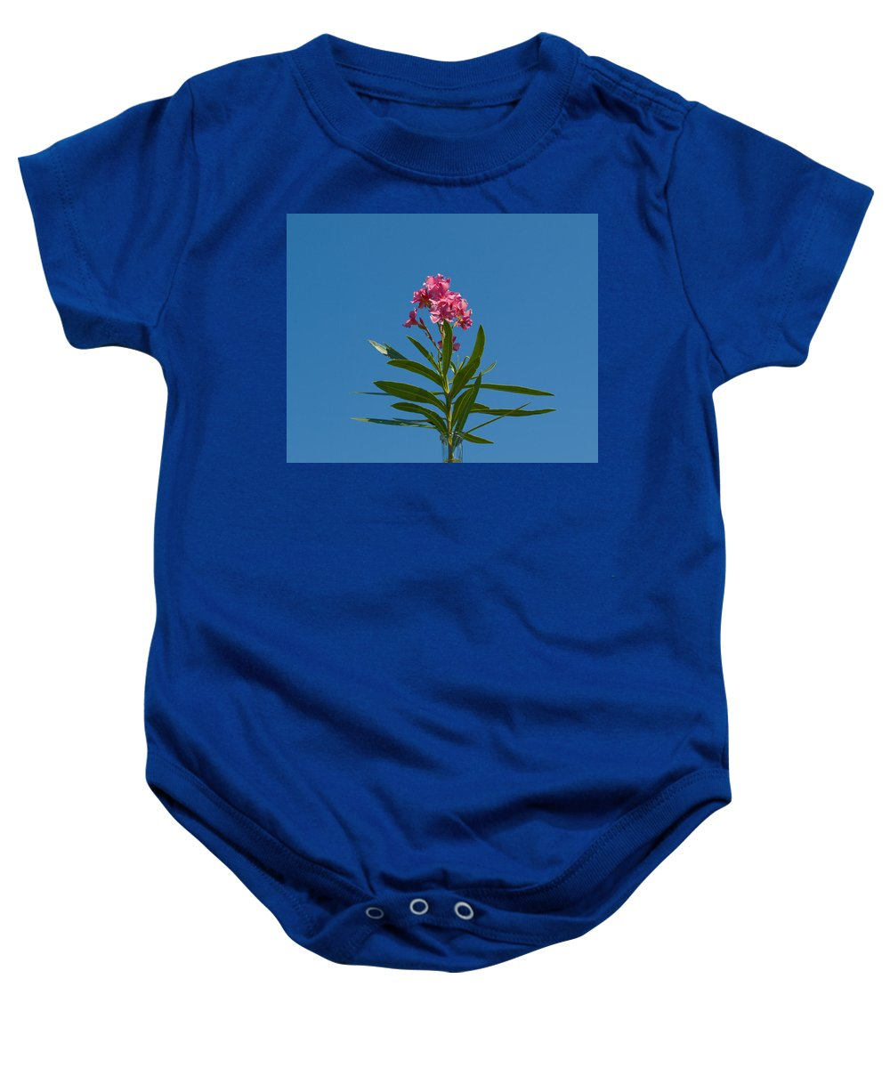 Florida; Indian; River; Melbourne; Nerium; Oleander; Red; Pink; Flower; Bush; Shrub; Poison; Poisono Baby Onesie featuring the photograph Pink Florida Oleander Blossom by Allan Hughes