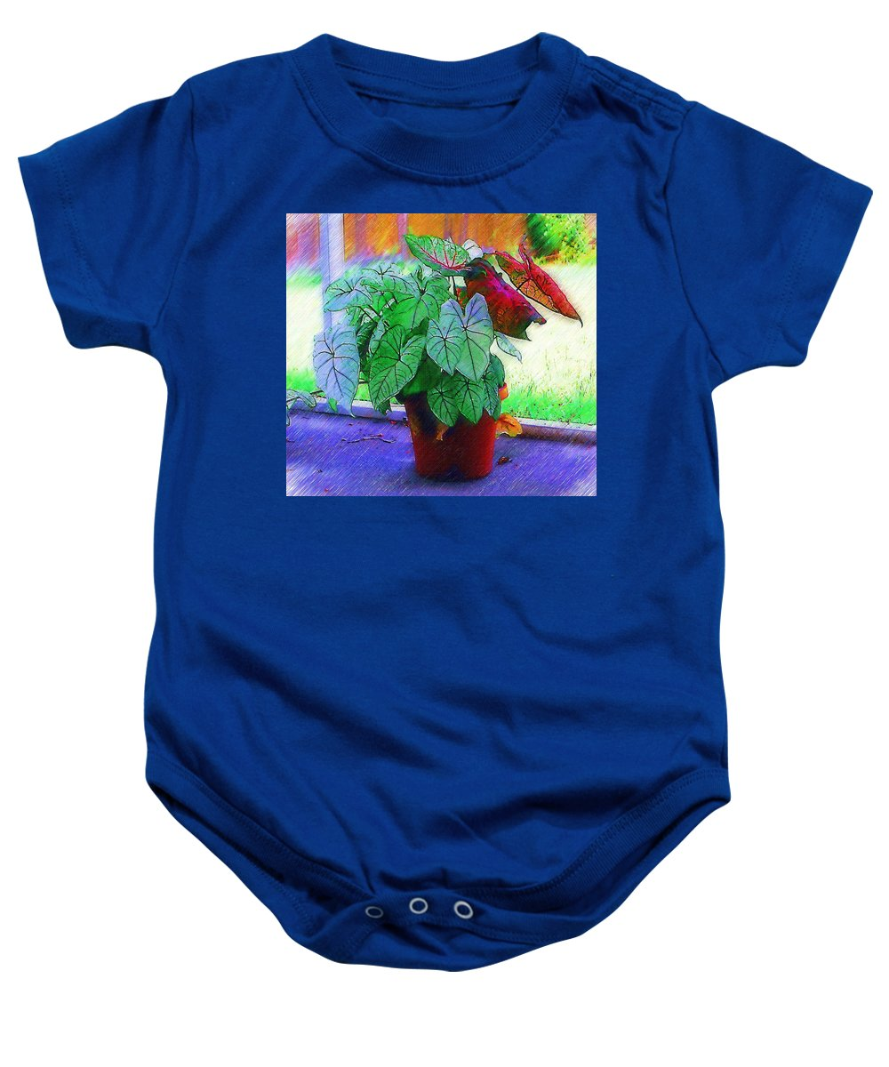Garden Baby Onesie featuring the photograph Potted Plant by Donna Bentley