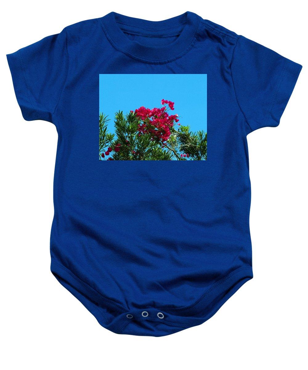 Red; Bougainvillea; Glabra; Juniperus; Vitginiana; Silicicola; Coastal; Cedar; Tree; Vine; Grow; Gro Baby Onesie featuring the photograph Red Bougainvillea Glabra Vine by Allan Hughes