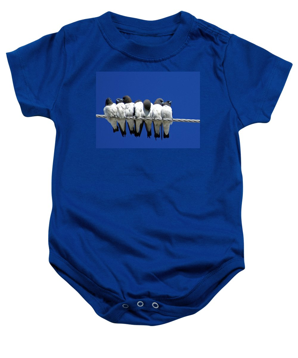 Animals Baby Onesie featuring the photograph Seven Swallows Sitting by Holly Kempe