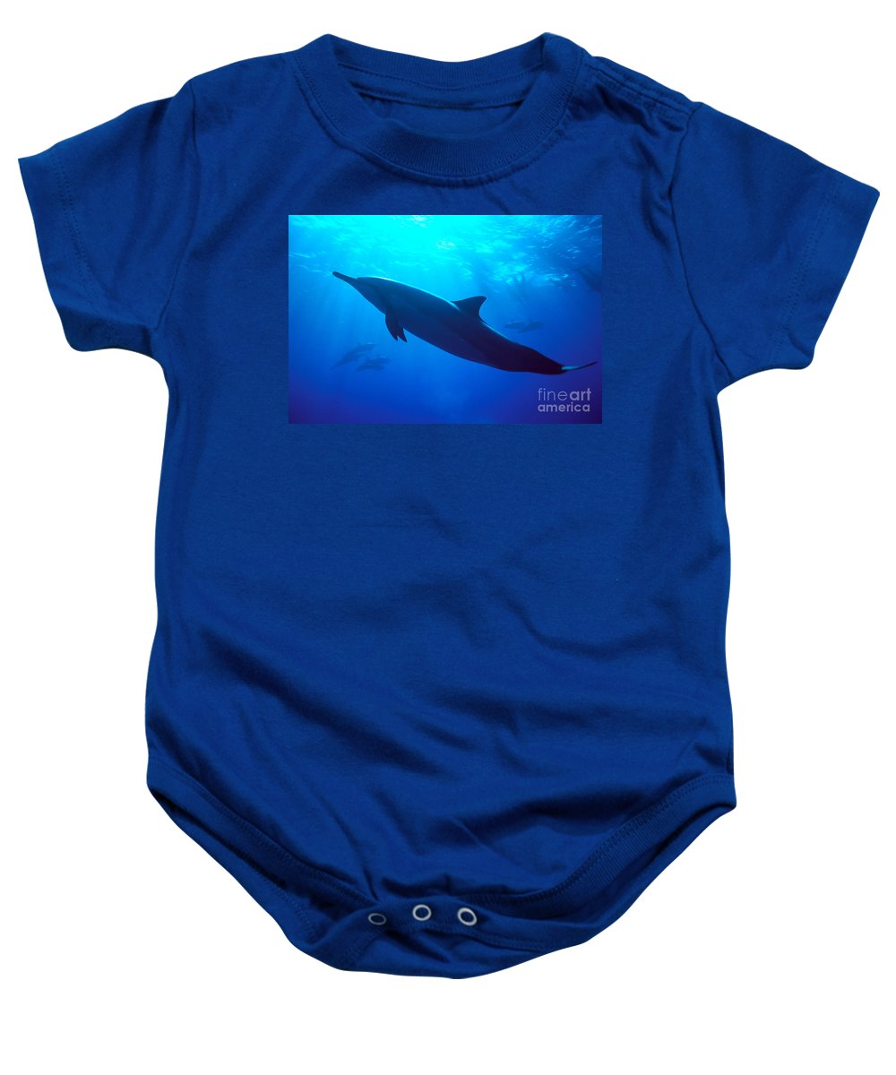 Adult Baby Onesie featuring the photograph Spinner Dolphin by Dave Fleetham - Printscapes