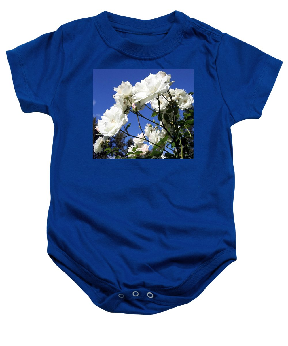 Roses Baby Onesie featuring the photograph The Iceberg Rose by Will Borden