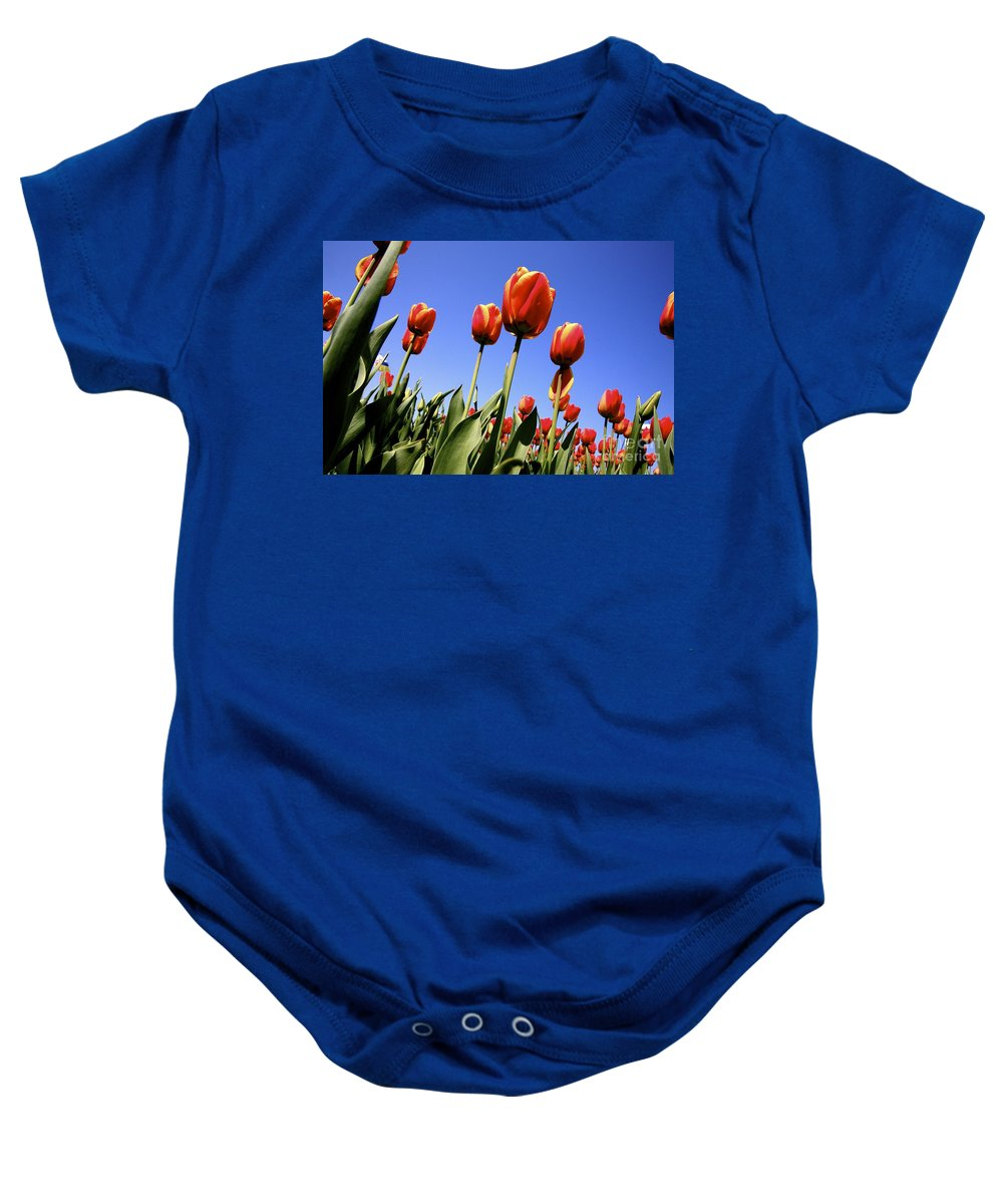 Tulips Baby Onesie featuring the photograph Tulips Time 3 by Robert Pearson
