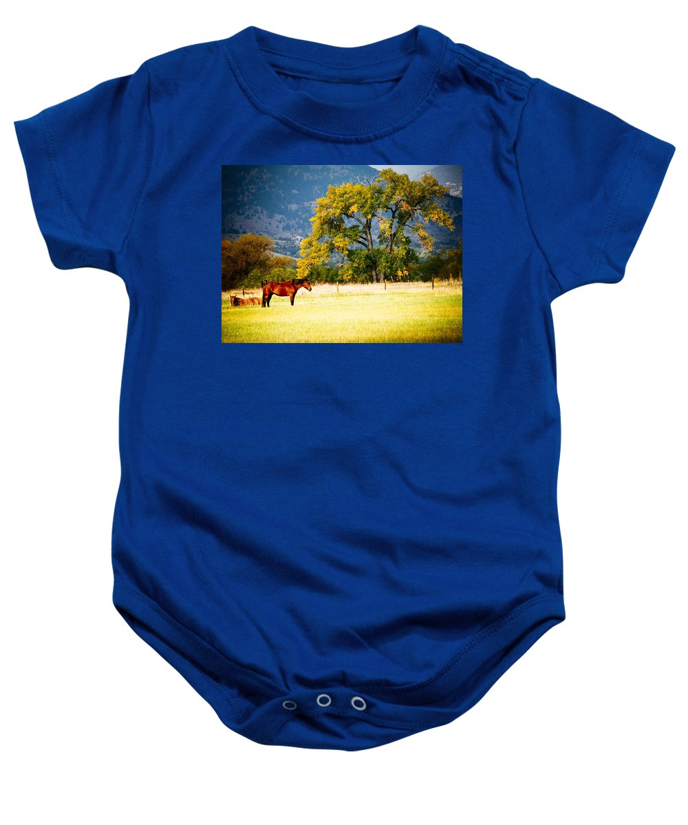 Animal Baby Onesie featuring the photograph Two Horses by Marilyn Hunt